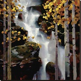 Waterfall Stretched Canvas Print by Michael O'Toole
