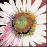 Sunshine Flower I Stretched Canvas Print by Leslie Bernsen