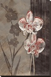 Orchid Sketch I Stretched Canvas Print by Tandi Venter