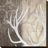Deer Lodge I Stretched Canvas Print by Tandi Venter