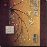 Oriental Blossoms II Reproducción en lienzo de la lámina por Don Li-Leger