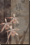 Orchid Sketch II Stretched Canvas Print by Tandi Venter