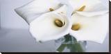 Springplicity II Reproduction sur toile tendue par Cinzia Ryan