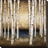 Birch Landing Stretched Canvas Print by Patrick St. Germain