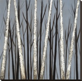Birch Shadows Stretched Canvas Print