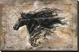 Black Beauty Stretched Canvas Print by Marta Wiley