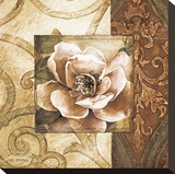 Linen Roses II Stretched Canvas Print by Linda Thompson