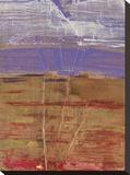 Ablaze II Stretched Canvas Print by Elizabeth Jardine