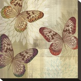 Tropical Butterflies I Stretched Canvas Print by Tandi Venter