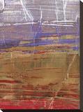 Ablaze I Stretched Canvas Print by Elizabeth Jardine