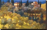 Florentine Landscape Stretched Canvas Print by Philip Craig
