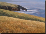 Patrick Head I Stretched Canvas Print by Kent Lovelace