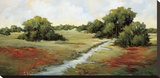 Kissimmee Grasslands Stretched Canvas Print by Maija Baynes