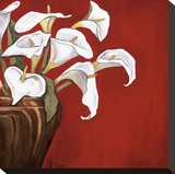 Arums sur fond rouge Reproduction transf&#233;r&#233;e sur toile par Ann Parr