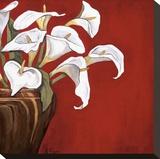 Arums sur fond rouge Reproduction transférée sur toile par Ann Parr