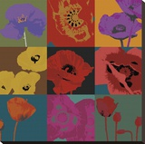 Pop Poppies Stretched Canvas Print by Don Li-Leger