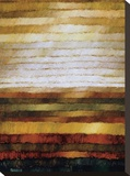 Preria Stretched Canvas Print by Zenon Burdy
