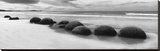 Moeraki Boulders Panorama Stretched Canvas Print by Monte Nagler