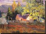 Rural Vista II Stretched Canvas Print by Nancy Lund