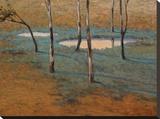 Marais Stretched Canvas Print by Kent Lovelace