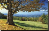Blue Ridge Beauty Stretched Canvas Print by Mike Jones