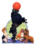 """Poodle Tricks,""June 19, 1926 Giclee Print by Robert L. Dickey"