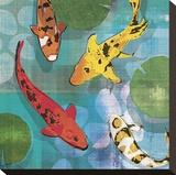 Lucky Koi I Reproduction transférée sur toile par Tandi Venter