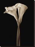 The Embrace Lærredstryk på blindramme af John Rehner