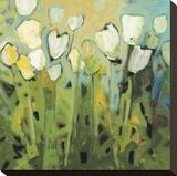 White Tulips I Stretched Canvas Print by Jennifer Harwood
