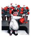"""Toddler Watering Geraniums,""June 28, 1924 Giclee Print by Katherine R. Wireman"