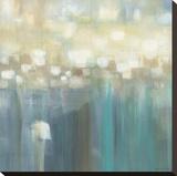 Aqua Light Leinwand von Karen Lorena Parker