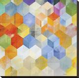 Cubitz II Reproducción en lienzo de la lámina por Noah Li-Leger