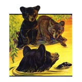 """Bear and Cubs in River,""August 25, 1934 Giclee Print by Jack Murray"