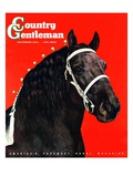"""Prize Draft Horse,"" Country Gentleman Cover, September 1, 1944 Giclee Print by Salvadore Pinto"