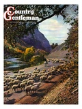 """Herding Sheep,"" Country Gentleman Cover, September 1, 1943 Giclee Print by Mike Roberts"