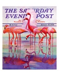"""""""Pink Flamingos,"""" Saturday Evening Post Cover, January 29, 1938 Stampa giclée di Francis Lee Jaques"""