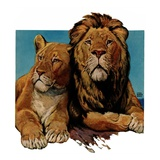 """Lion Couple,""March 19, 1932 Giclee Print by Lynn Bogue Hunt"