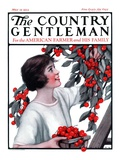 """Picking Pints of Cherries,"" Country Gentleman Cover, May 19, 1923 Giclee Print by Katherine R. Wireman"