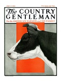 """Black and White Cow in Profile,"" Country Gentleman Cover, July 21, 1923 Giclee Print by Charles Bull"