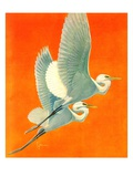 """Flying Storks,""June 19, 1937 Giclee Print by Francis Lee Jaques"