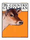 """Dairy Cow,"" Country Gentleman Cover, May 12, 1923 Giclee Print by Charles Bull"