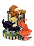 """Dogs Eating Hat,""July 14, 1928 Giclee Print by Robert L. Dickey"
