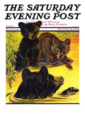 """Bear and Cubs in River,"" Saturday Evening Post Cover, August 25, 1934 Giclee Print by Jack Murray"