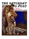 """Mother Collie and Pup,"" Saturday Evening Post Cover, July 15, 1933 Giclee Print by Howard Van Dyck"