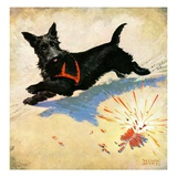 """Dog and Firecrackers,""July 1, 1936 Giclee Print by Nelson Grofe"