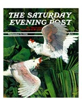 """Two Cockatoos,"" Saturday Evening Post Cover, September 3, 1938 Giclee Print by Julius Moessel"