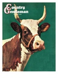 """Long-Horned Cow,"" Country Gentleman Cover, February 1, 1945 Giclee Print by F.P. Sherry"
