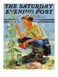 """Boy Botanist,"" Saturday Evening Post Cover, August 27, 1932 Giclee Print by Eugene Iverd"