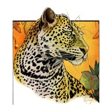 """Leopard,""August 29, 1931 Giclee Print by Jack Murray"