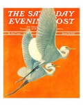 """Flying Storks,"" Saturday Evening Post Cover, June 19, 1937 Giclee Print by Francis Lee Jaques"